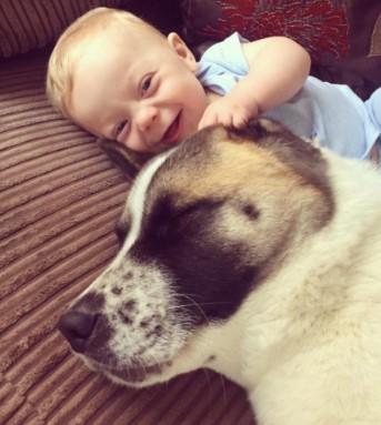 куче и бебе