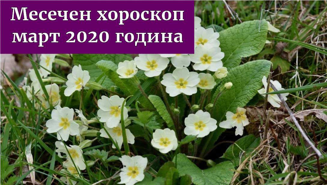 месечен хороскоп март 2020