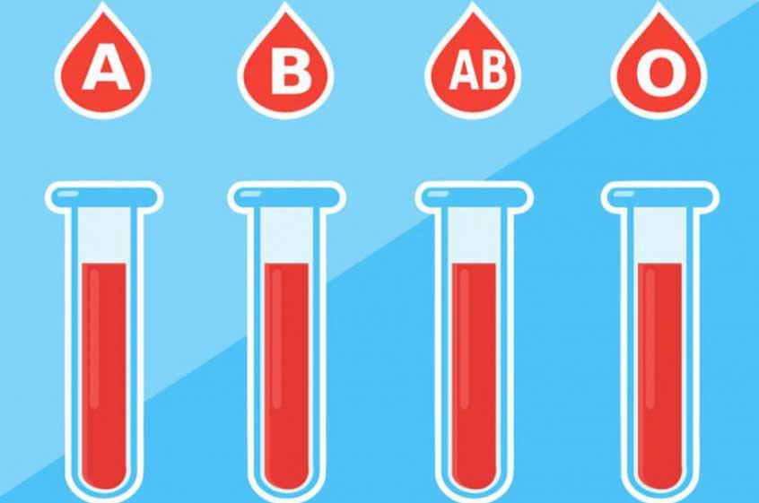 кръвната група определя